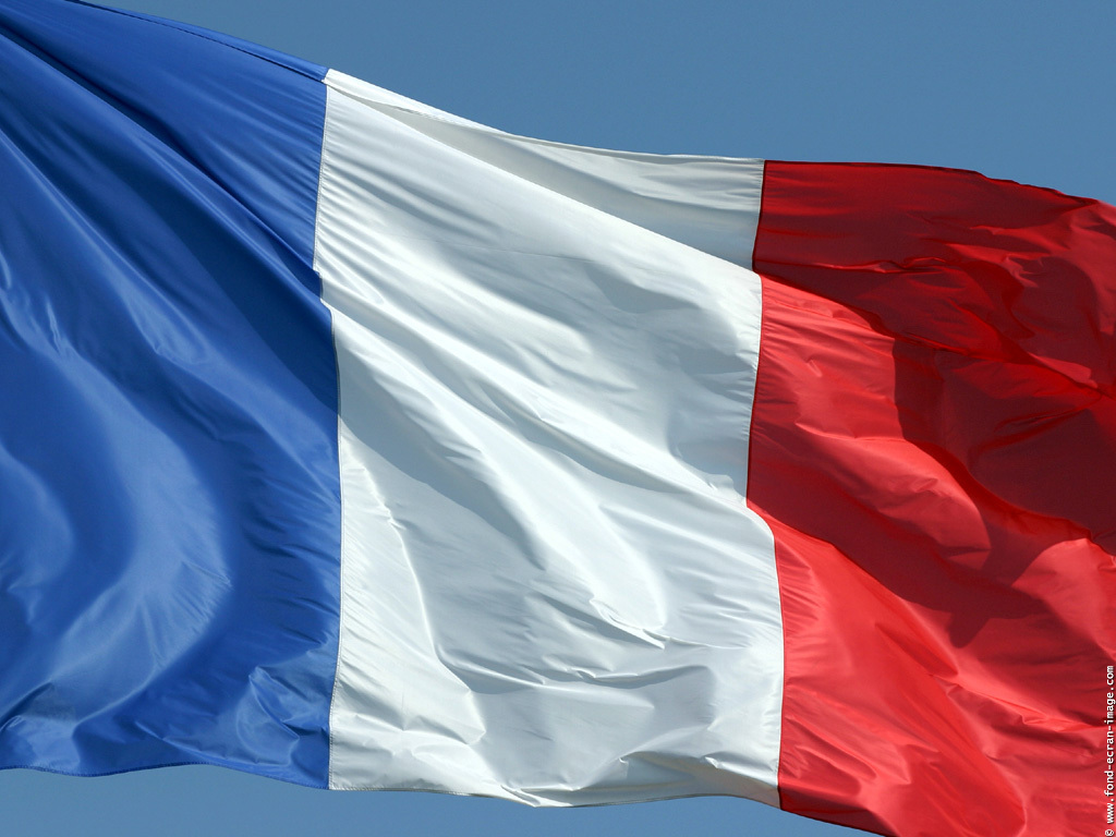 ti va di imparare il francese?