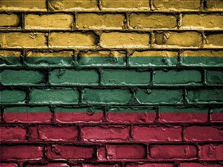 Opportunità SVE in Lituania in servizi formativi e di assistenza