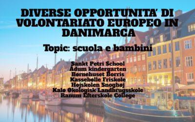 Diverse opportunità di Volontariato Europeo in Danimarca