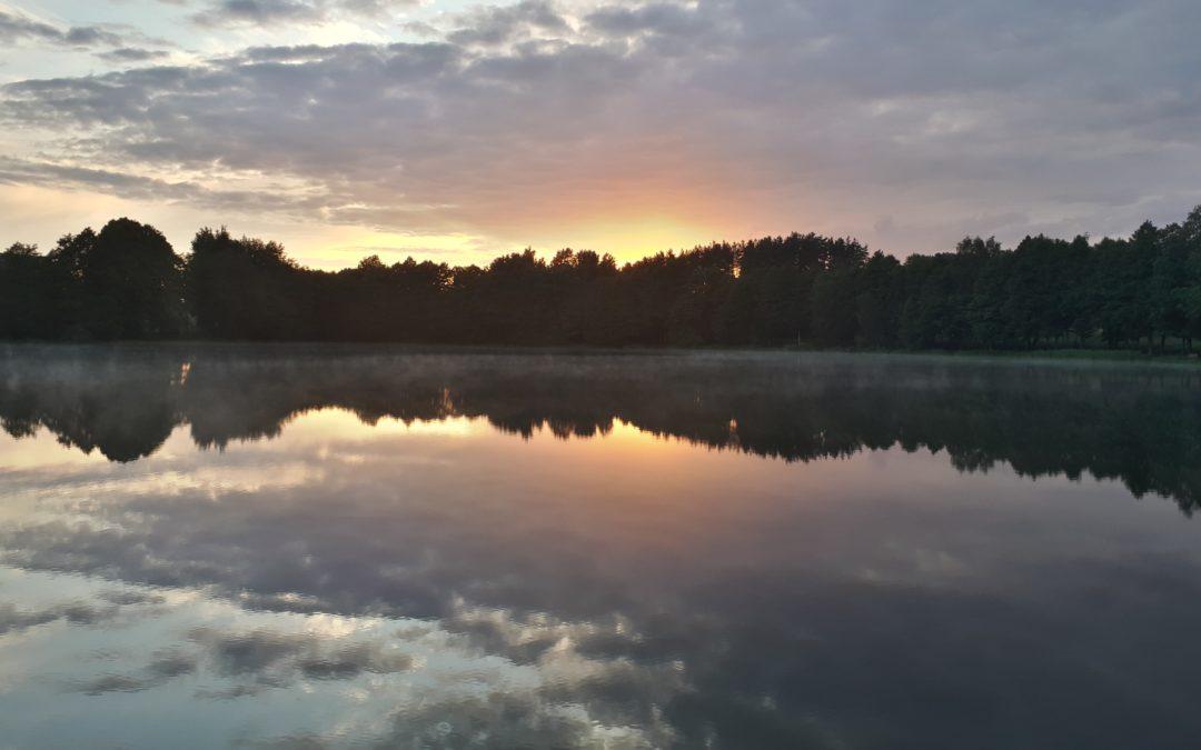 Immersi nel verde della Lituania